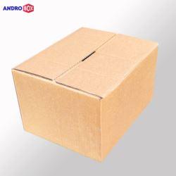 Karton klapowy 250x200x100mm 3W B 390g/m2 20 szt.