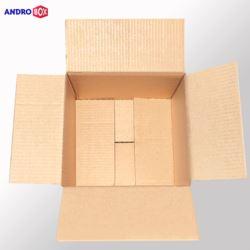 Karton klapowy 250x200x200mm 3W B 390g/m2 20 szt.